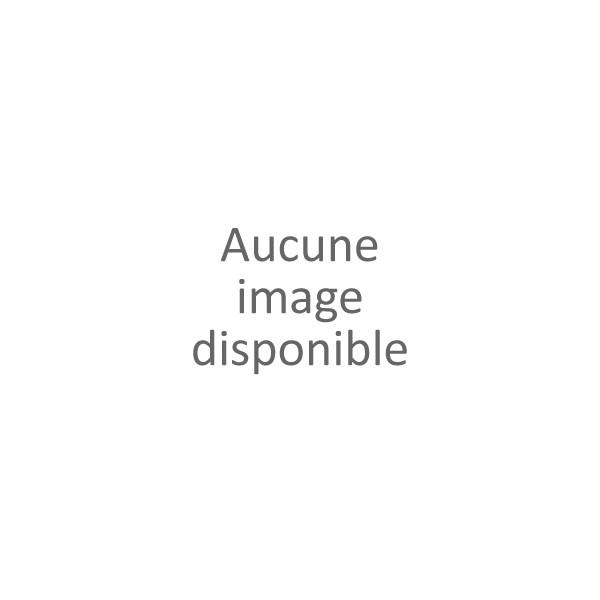 DUB INC - LE STEREOLUX - NANTES - le 01/04/2020 à 20H00